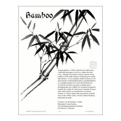 Bamboo Lesson by Nan Rae