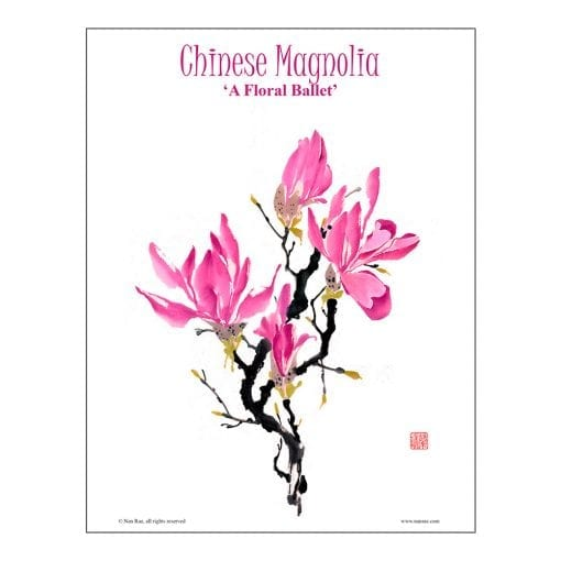 Chinese Magnolia Brush Painting Lesson by Nan Rae