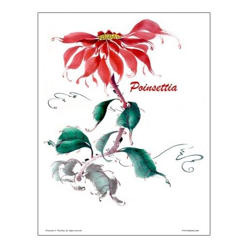 Poinsettia Brush Painting Class Lesson by Nan Rae