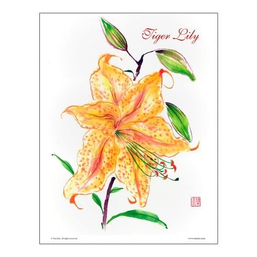 Tiger Lily Brush Painting Class Lesson by Nan Rae