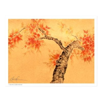 Golden Moment (Japanese Maple Tree) Print by Nan Rae