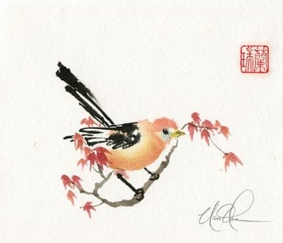 Bird on Maple branch painting