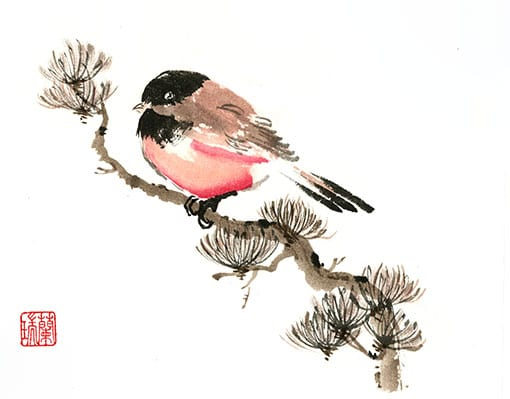 Original Bird painting by Nan Rae