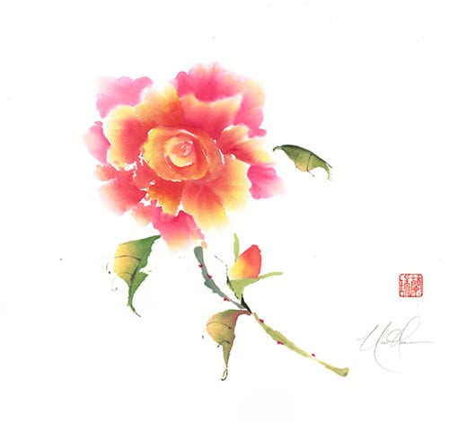 Rose painting by Nan Rae